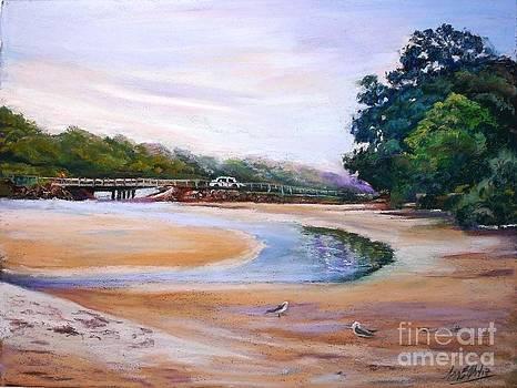 A bridge over Moona Moona creek by Marieve Ortiz