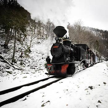 A century train by Ovidiu Bastea