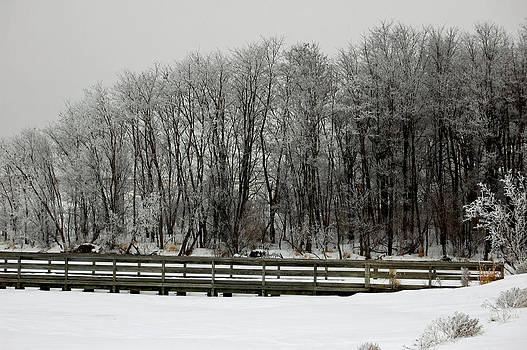 A cold day at Lake Zorinski. by Randall Templeton