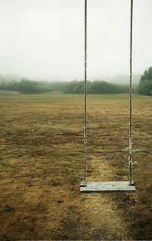 A Empty Childrens Swing In A Field by Marlene Ford