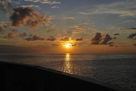 A Ferry Sunset by Julie Strickland