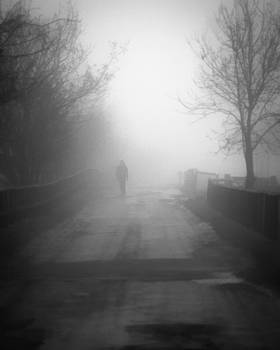 A misty walk by Riot Photography
