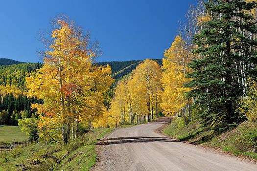 Tim Grams - A Road Through Colors