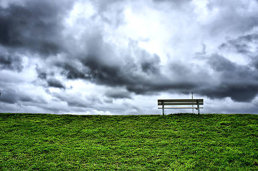 A Seat with a View by Edward Myers