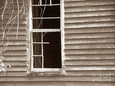 A window into the past by Cindy Hudson