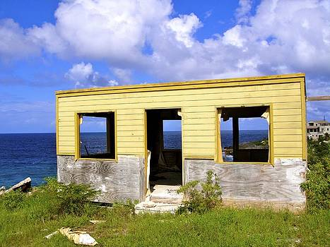 Jennifer Lamanca Kaufman - Abandoned Island Home