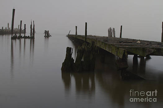 Abandoned pier on the Hudson River one foggy morning. by Robert Wirth