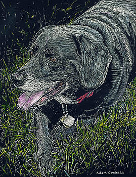 Abbe the Dog by Robert Goudreau