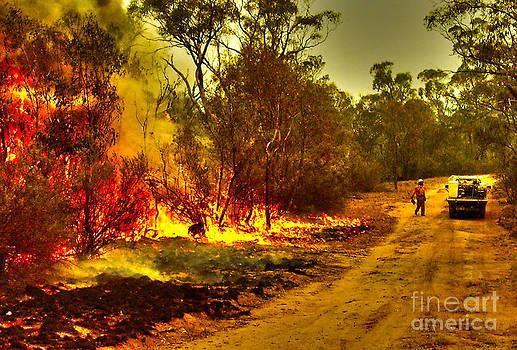 Ablaze by Joanne Kocwin