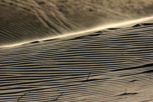 Abstract Sand 2 by Arie Arik Chen