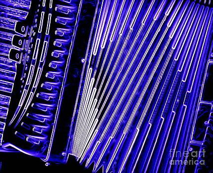 Sue Wild Rose - Accordion In Blue