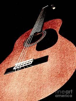 Acoustica by Chris Murphy Elliott