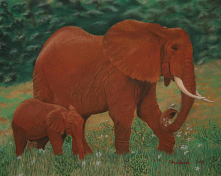 African Elephant and baby by Charles Hubbard