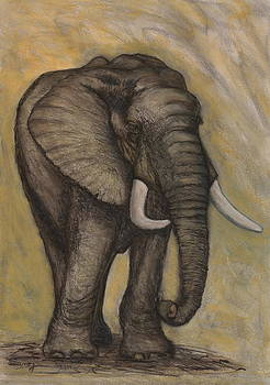 African Elephant by Sarojini Muller