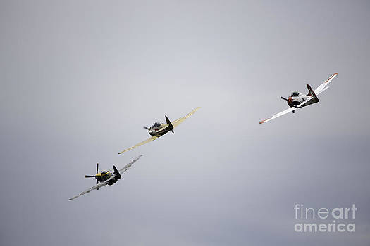 Air Show 13 by Darcy Evans