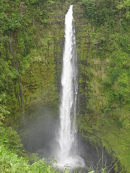 Akaka Falls by Ron Holiday Broomell