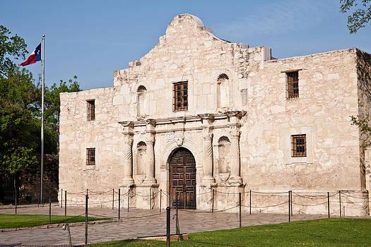 Johnny Sandaire - Alamo