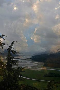 Alaskan Cove by Carol Kinkead