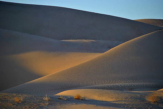 Algodones Sand Dunes - Southern California by Eleu  Tabares