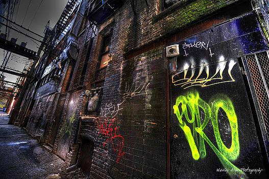 Alley Art 19 by Wesley Allen Shaw