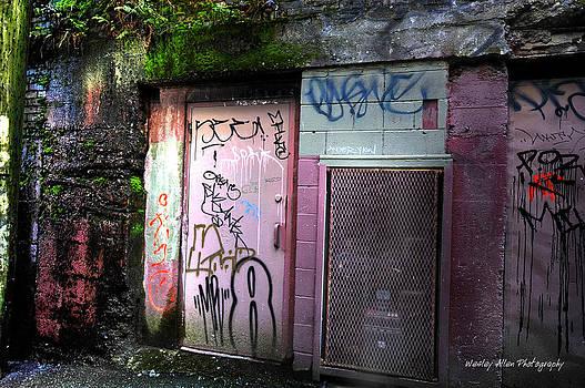 Alley Art 3 by Wesley Allen Shaw