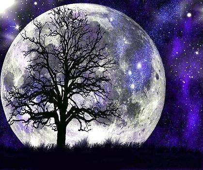 Alone In The Moonlight by Karen Conine