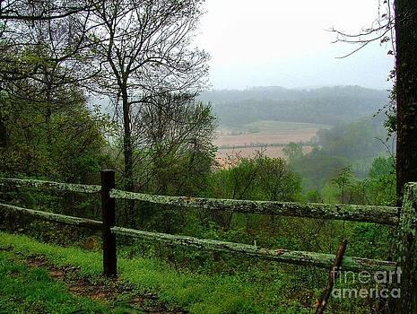 Along the Natchez Trace by Julie Dant