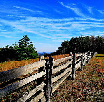Along the Old Mountain Fence by Tom Carriker