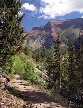 Marty Koch - Along the Trail