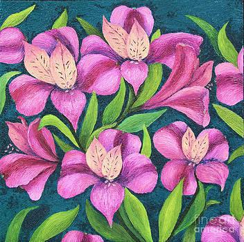 Alstroemeria by Barbara Nolan