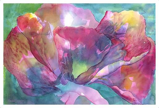 Amazing Poppy by Margaret Sarantis