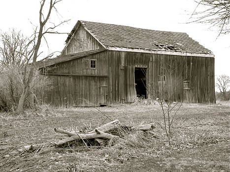 American Barn by Rhonda Jones