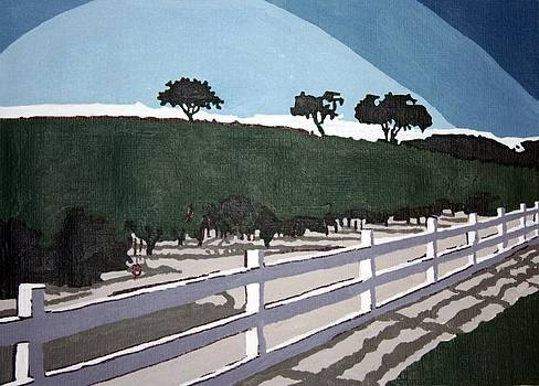 Americana No.13  Fence No.3 by Sheri Parris