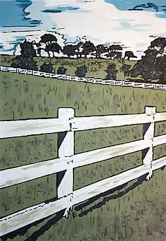 Americana No.5 Fence No.5 by Sheri Parris