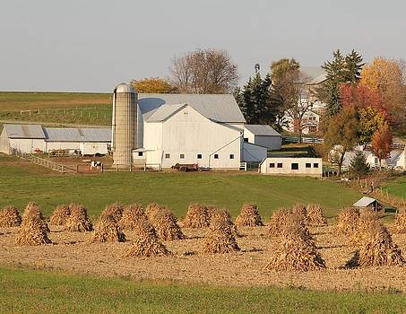 Amish Countryside by Donna Bosela