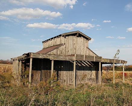 Amish Shed #2 by Donna Bosela