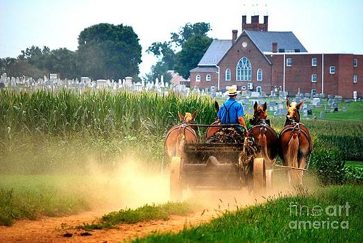TSC Photography Timothy Cuffe Jr - Amish34