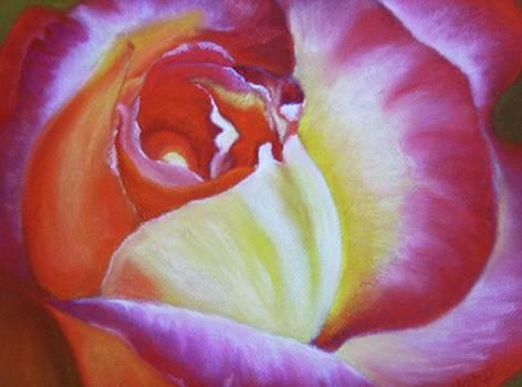 Amor Y Paz by Marcia  Hero