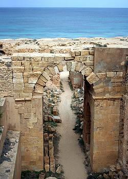 Amphitheatre, Leptis Magna, Libya by Joe & Clair Carnegie / Libyan Soup