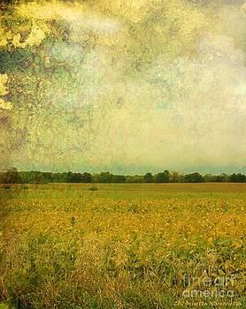 Ancient Harvest by Brigetta  Margarietta
