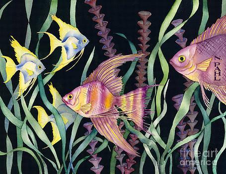 Angel Fish Hallucination by Nancy Pahl