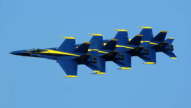 Blue Angels - Lined Up by Jeff Murphy