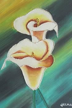 Anthurium Flowers by Rejeena Niaz