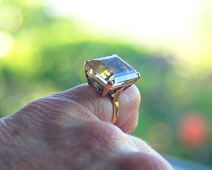 Antique Ring Antique Finger by Vicki Coover