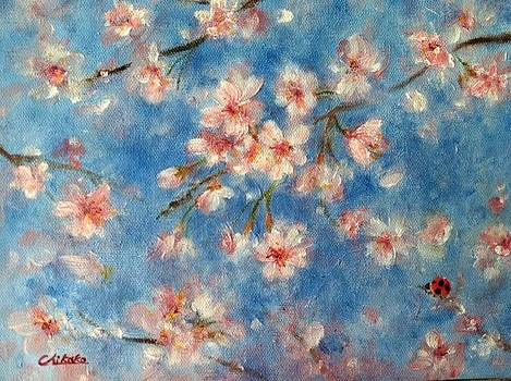 April Sky by Chikako Takizawa