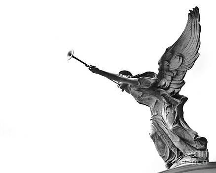 Archangel by Darwin Lopez