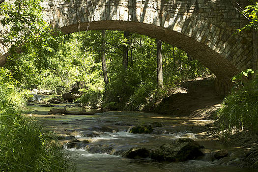 Arched Bridge by Terry Hollensworth-Rutledge