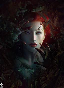 Ariel by Omri Koresh