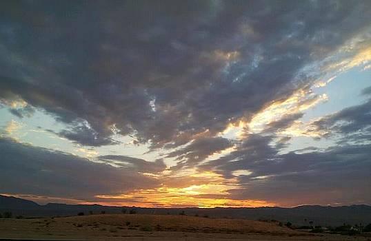 Arizona by Anne Back