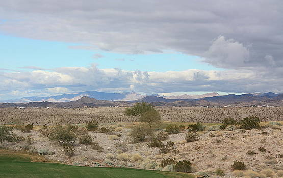 Arizona Desert View by Carrie  Godwin
